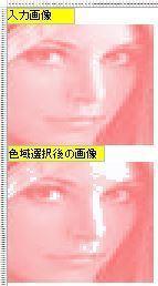 色域選択_処理前後画像.jpg